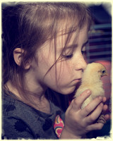 Steven's kids with baby chicks Feb 2017
